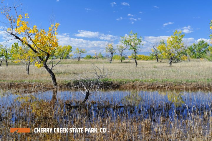 cherry-creek-state-park-photo-credit-to-Spokenhope-on-flickr-watermark-1200x800